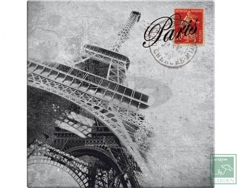 Плот PARIS 1889